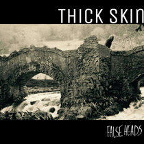 THICK SKIN/SLEW cover art