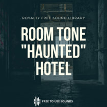 """Room Tone """"Haunted"""" Hotel   Dripping Water, Rain, Pigeons & Swallows Sounds cover art"""