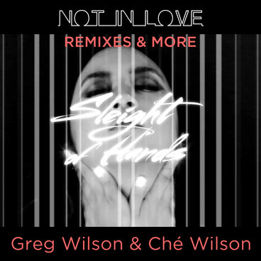 NOT IN LOVE (remixes & more) main photo