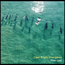 Clear Bright Divergence cover art