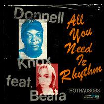 All You Need Iz Rhythm cover art