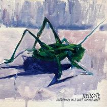 Disturbance in a Quiet Summer Night cover art