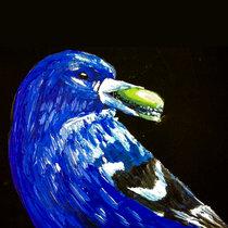 Flybird cover art