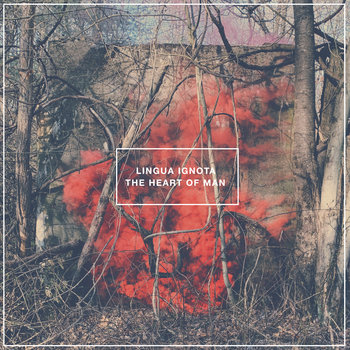 THE HEART OF MAN by LINGUA IGNOTA