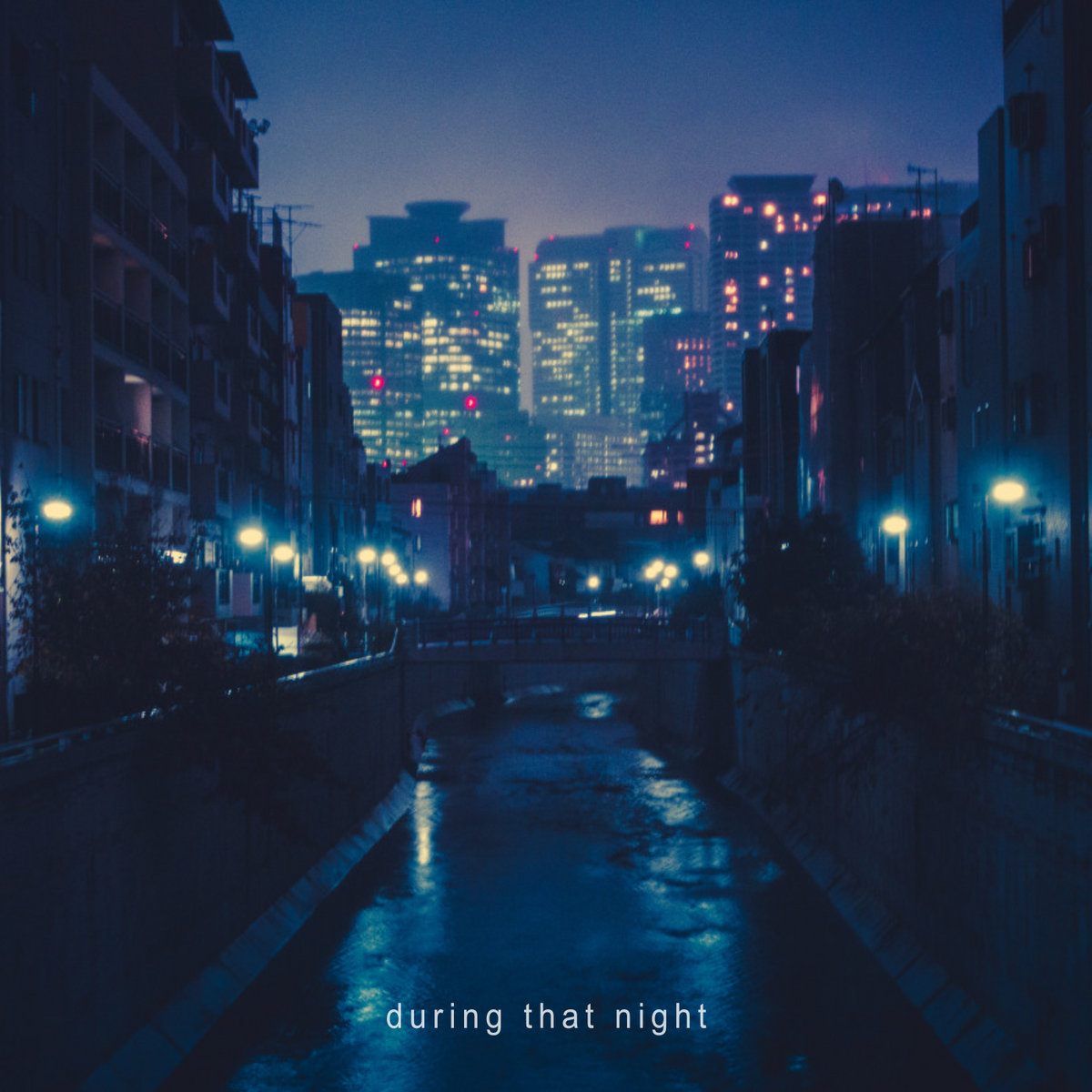 During That Night | Idealism