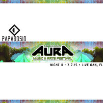 Live at Aura Music & Arts Festival |3.7.15| Live Oak, FL cover art