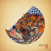 Awoke cover art