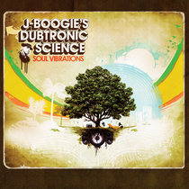 Soul Vibrations cover art