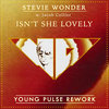 Stevie Wonder - Isn't She Lovely (Young Pulse Rework)