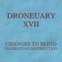 Droneuary XVII - Tolerating Destruction cover art