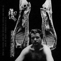 GOURD/Luxury Mollusc cover art