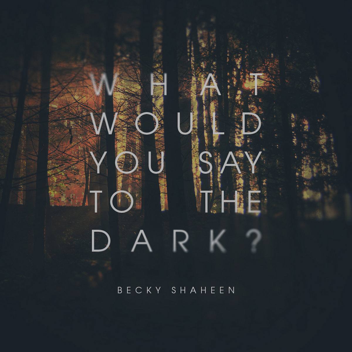 what would you say to the dark becky shaheen