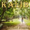 Brilliant Dreams [album] Cover Art