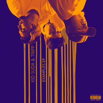 Examples cover art