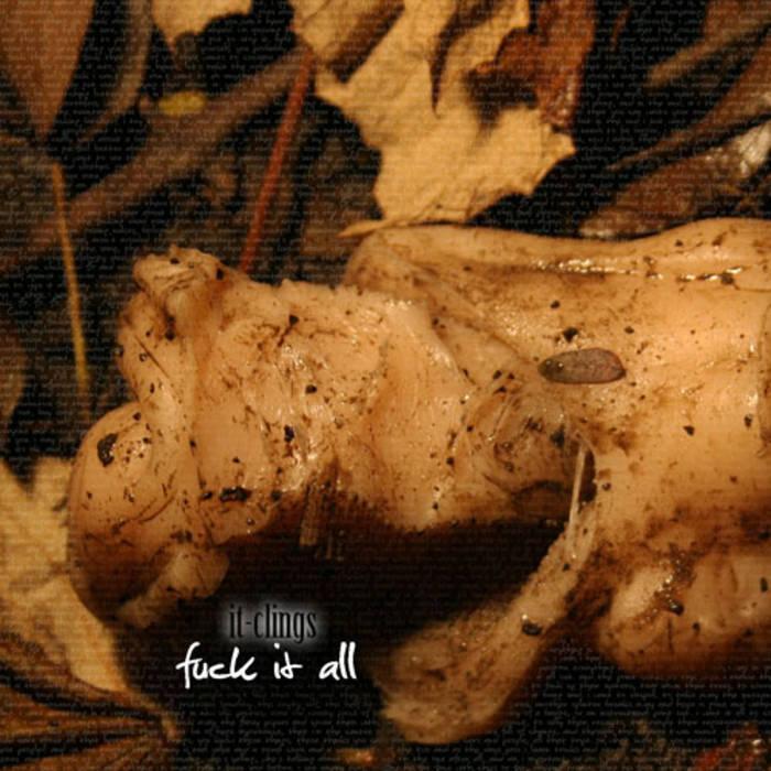 bugovi tittiesmršava obrijana crna maca