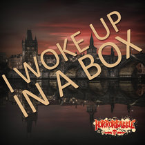 I Woke up in a Box: Special Edition cover art