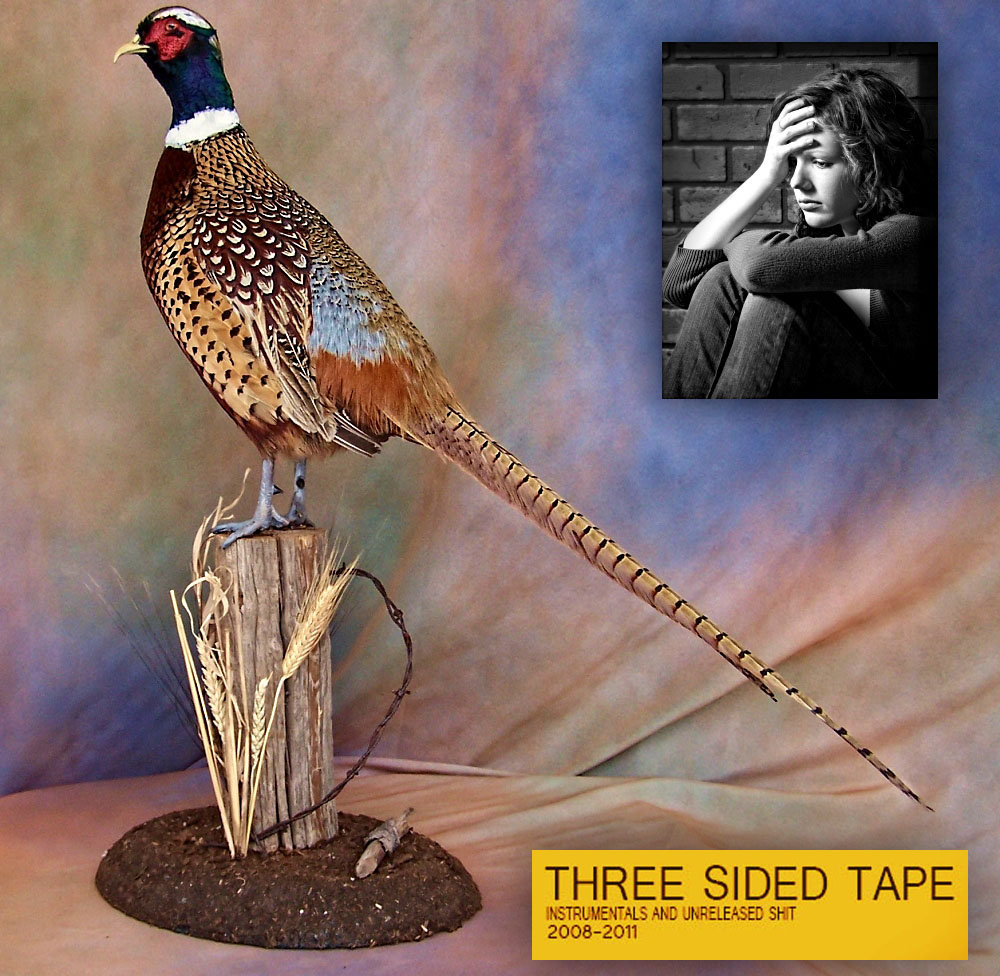 Three sided tape volume two | lil ugly mane.