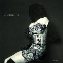 Meatsteel 1/6 - SUBSIST.37D cover art