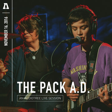 The Pack a.d. - Audiotree Live main photo
