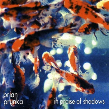 In Praise of Shadows by Brian Prunka