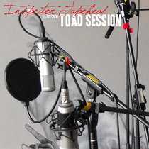 Toad Session #13 cover art