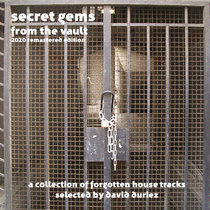 Secret Gems From The Vault [2020 Remastered Edition] : a collection of forgotten House tracks selected by David Duriez cover art