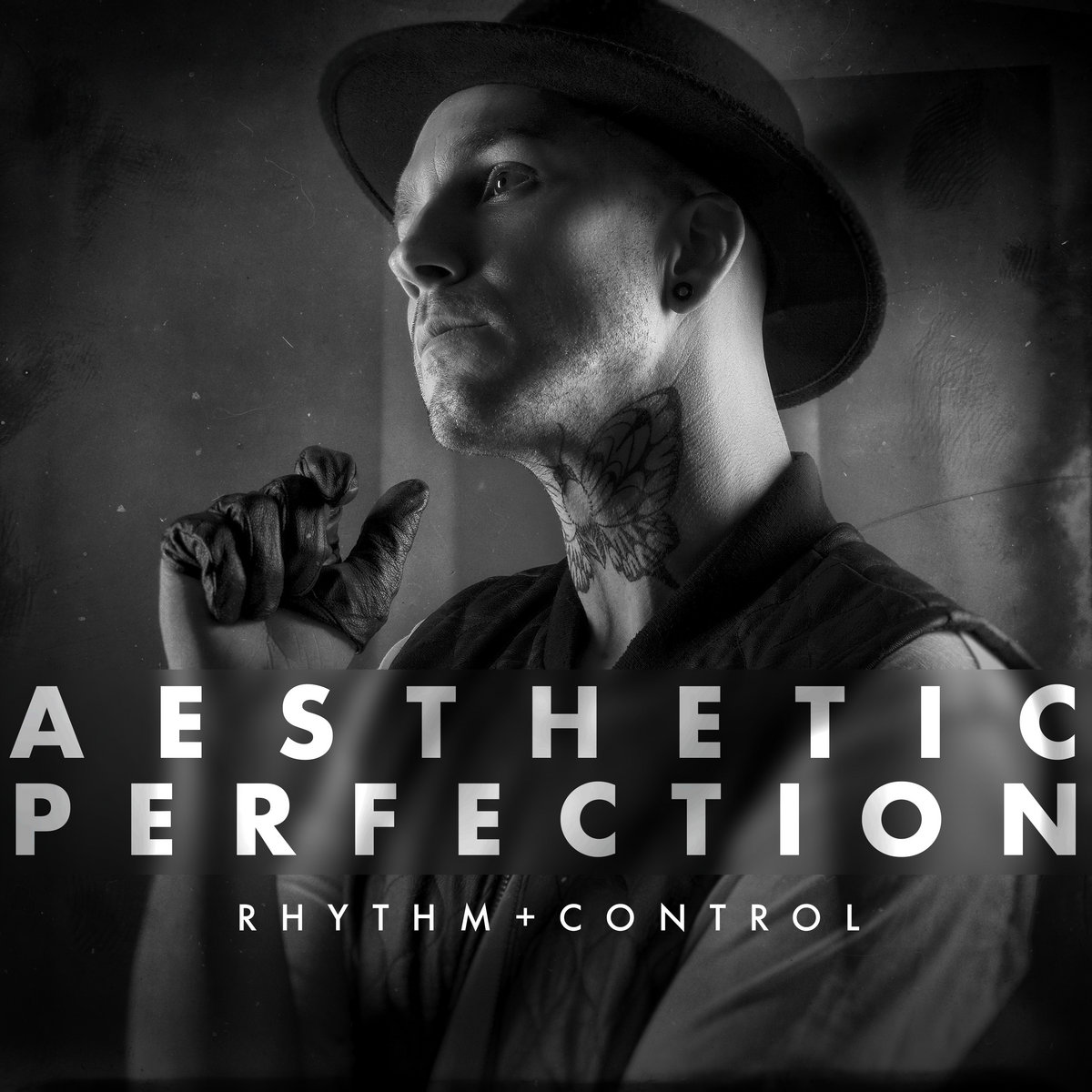 aesthetic perfection discography