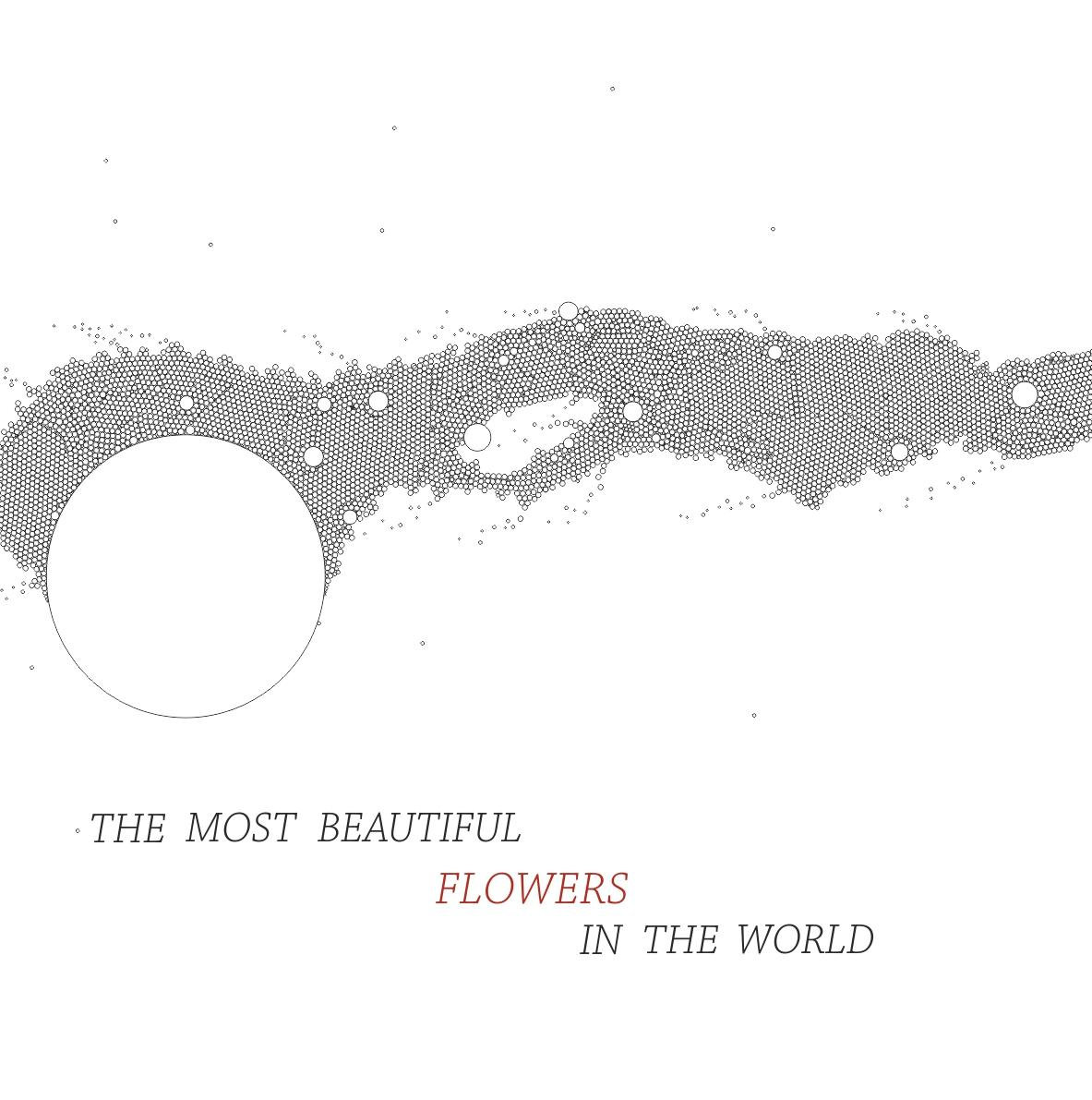 The Most Beautiful Flowers In The World Kib