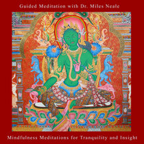 Mindfulness Meditations for Tranquility and Insight cover art