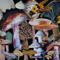 Habitat cover art