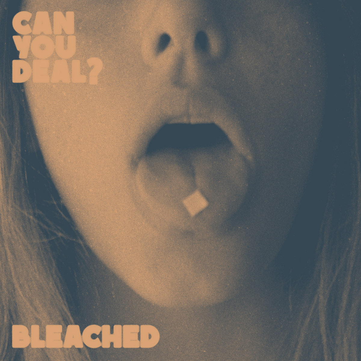 Image result for bleached can you deal band vinyl art