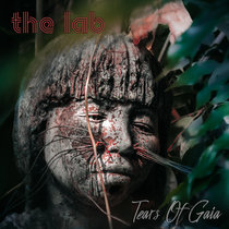 Tears Of Gaia (feat. Jochen Schrumpf) cover art