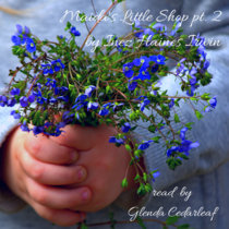 Bedtime Story: Maida's LIttle Shop Pt 2 cover art
