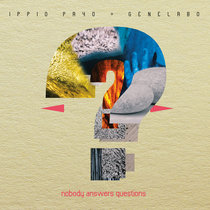 Nobody Answers Questions cover art