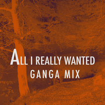 All I really Wanted (Ganga Mix) cover art