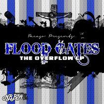 Flood Gates: The Overflow LP cover art