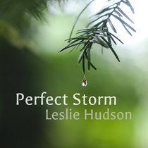 Perfect Storm [SINGLE] cover art