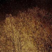"""""""Autumn Tears"""" cover art"""