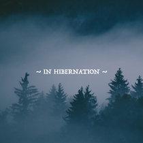 Seasons: In Hibernation cover art