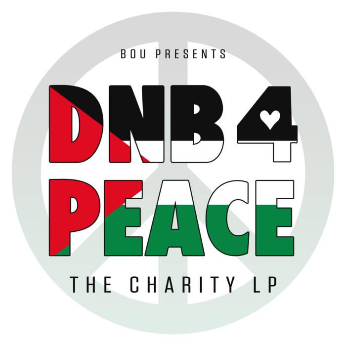 Download VA - DNB 4 PEACE: The Charity LP mp3