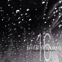 Nice & Slow 16 (Weathering The Storm) cover art