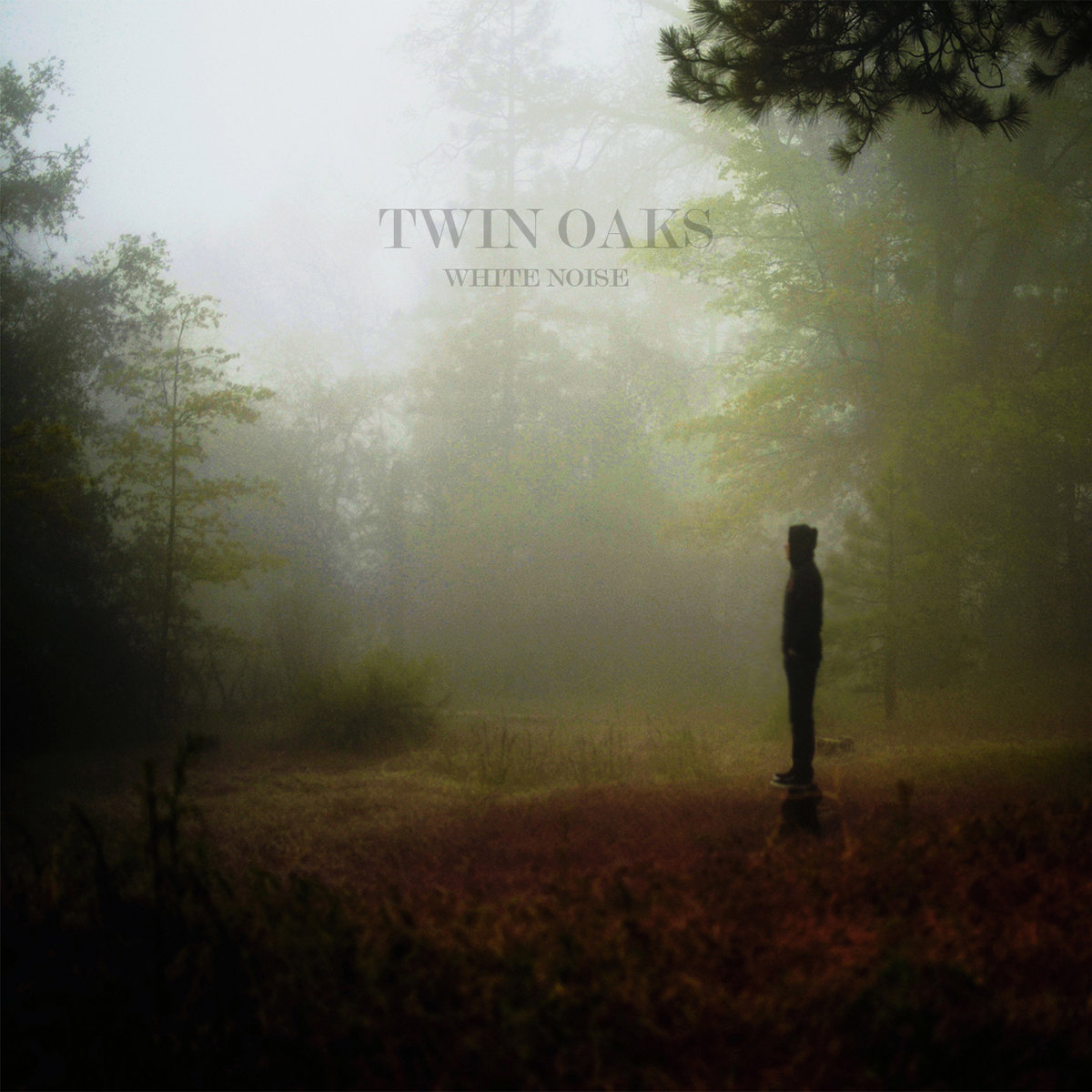 White Noise | Twin Oaks