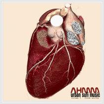 AHMM: Urban Sufi Music Vol.3 - Think Worthy cover art