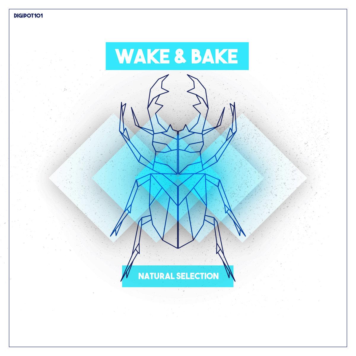Natural Selection [DIGIPOT101]   Wake & Bake   Melting Pot Records