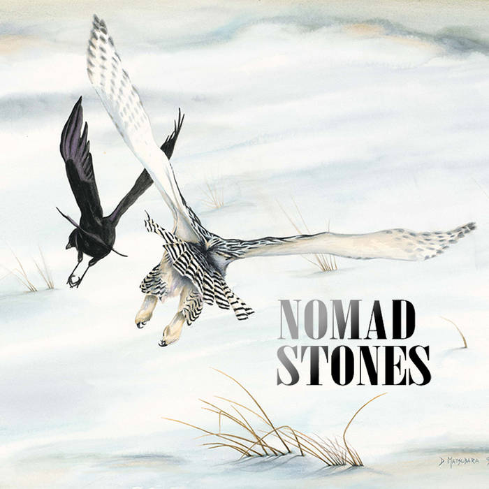 Nomad Stones - Neighborhood Bird Dispute