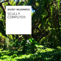 Scully Computer cover art