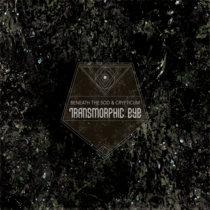 Transmorphic Eye cover art