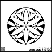 ENDLESS INSIDE cover art
