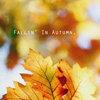 Fallin' In Autumn Cover Art