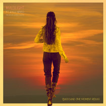 Quicksand (The Moment Redux) ft. Ayla Nereo & The Polish Ambassador cover art